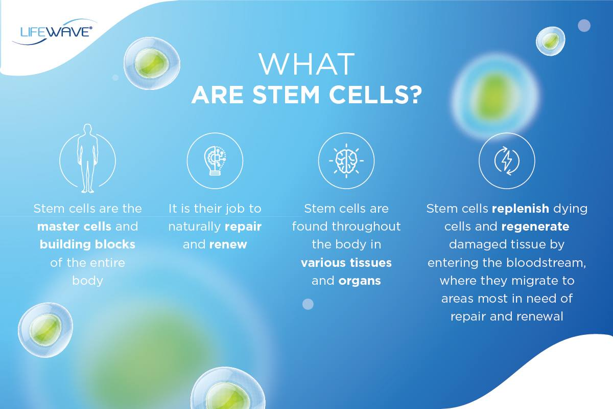 x39 patches What are stem cells?