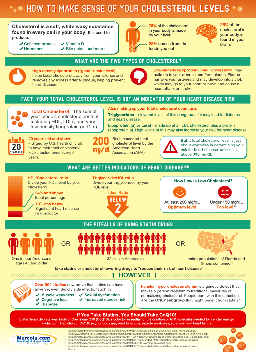 Dr. Mercola's Cholesterol Levels Iinfographic